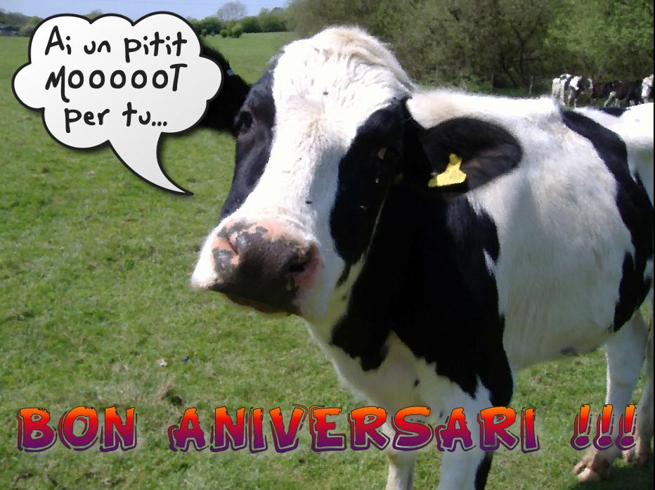 Mooooot d'Aniversari